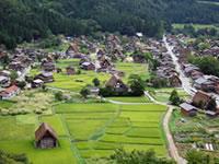 walk-shiro